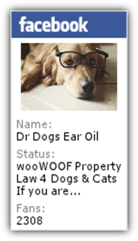 Order Dr Dogs Ear Oil